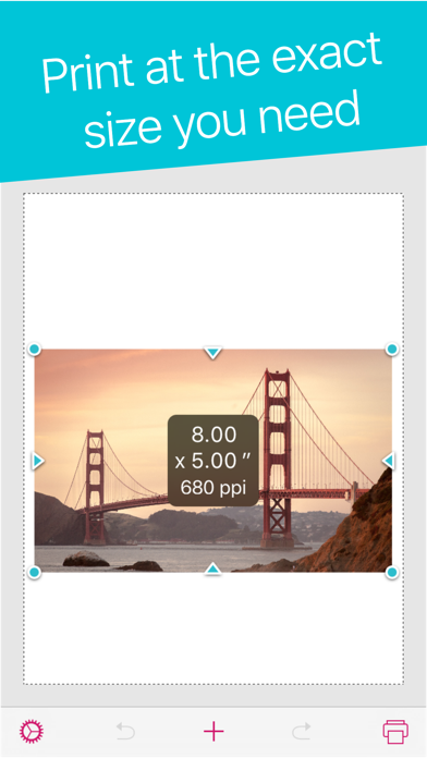 Print to Size app image