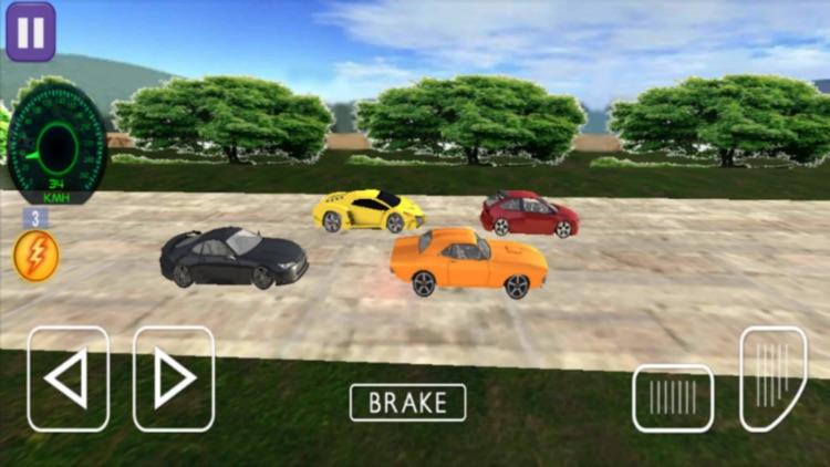 Real Car Racing Game Simulator screenshot-8