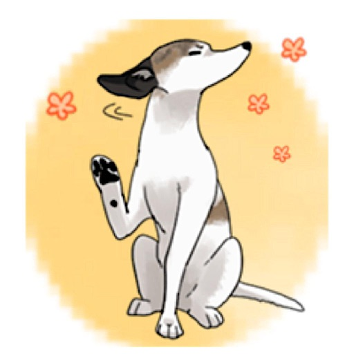 Cute Whippet Dog Sticker