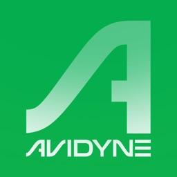 Avidyne IFD100