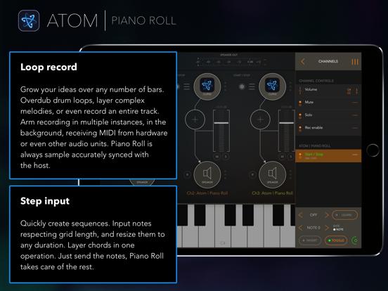 Atom | Piano Rollのおすすめ画像8