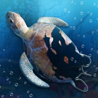 Codes for Idle Sea World! Hack