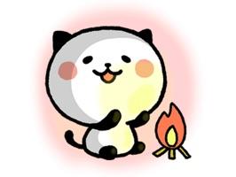 Kitty Panda HotWord