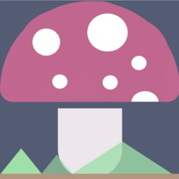 What's this mushroom?