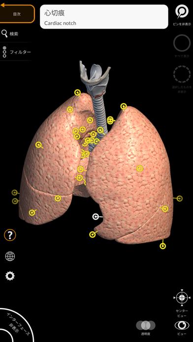 解剖学 - 3Dアトラス ScreenShot6