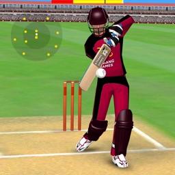 Smashing Cricket: Bat & Bowl