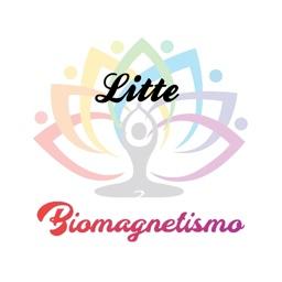 Biomagnetismo litte