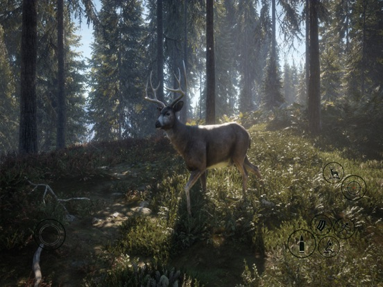HUNTER 2019 screenshot 18