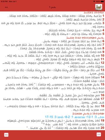 Assyrian Bible - náhled