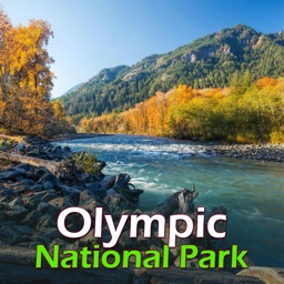 Olympic National Park Guide