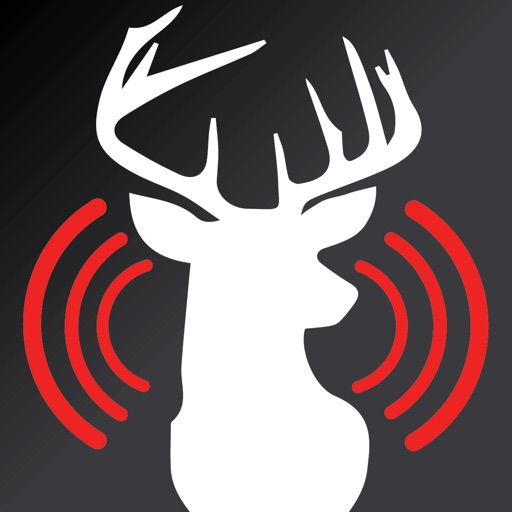Deer Calls for Whitetail