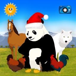 Animals (chinese version)