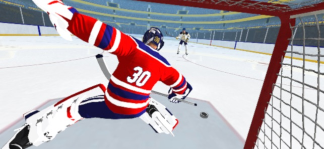 Hockey Games 3d On The App Store
