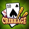 Cribbage - Crib & Peg Game - iPadアプリ