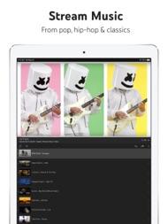 YouTube: Watch, Listen, Stream ipad images