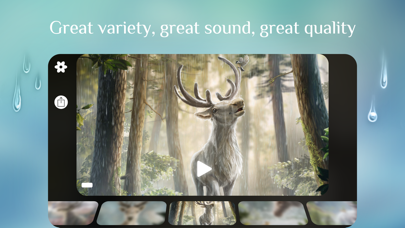 Rainy Sleep Rain Sounds HQ 3Dのおすすめ画像2