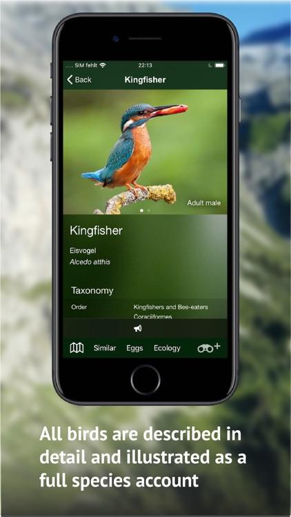 All birds CH - photo guide screenshot-4