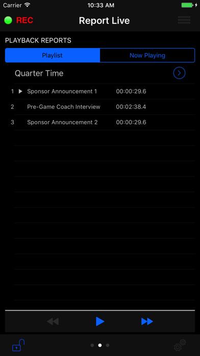 Report-IT Enterprise Edition screenshot