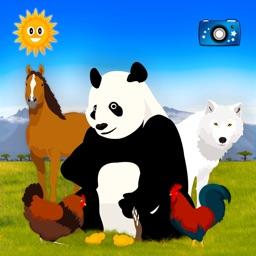 Find Them All: Animal World