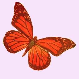 Glittered Butterflies