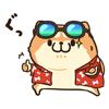 Chubby Dog in Summer