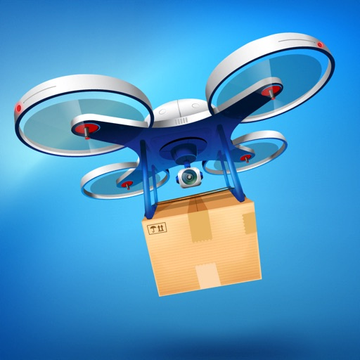 Drone Delivery