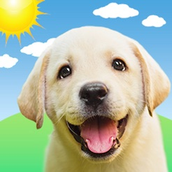 Weather Puppy: Forecast Radar on the App Store