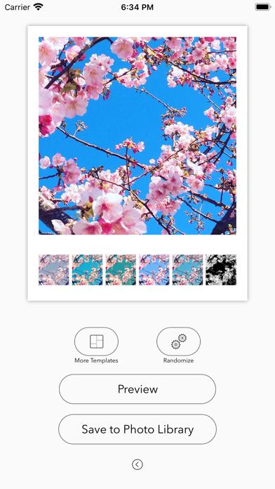 Filter Collage Maker screenshot 2