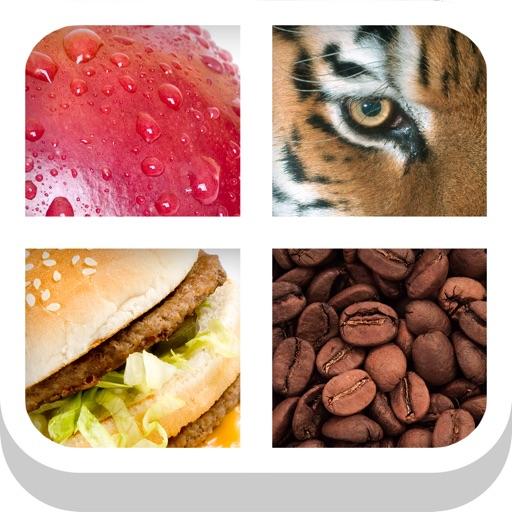 Close Up Pics - Zoom Quiz Game