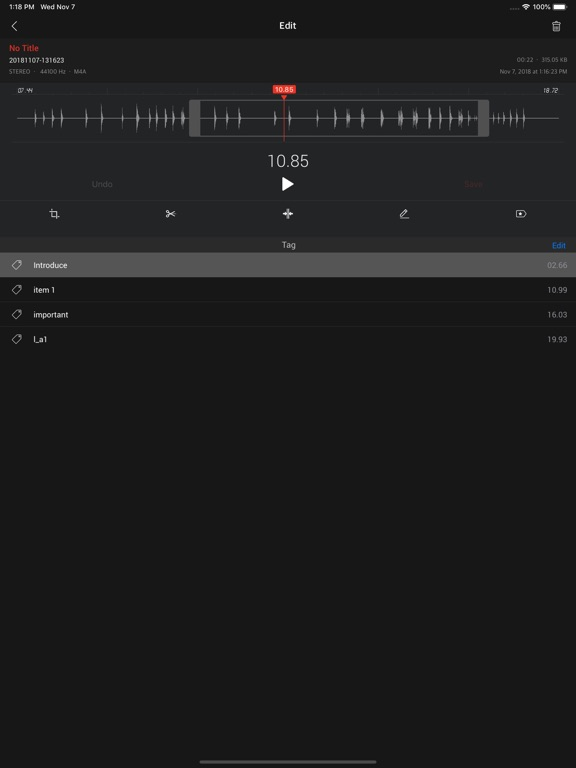 Awesome Voice Recorder X PRO Screenshots