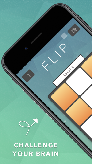 FLIP: A Puzzle Game 1