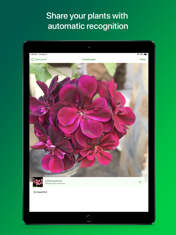 PlantSnap Plant Identification screenshot