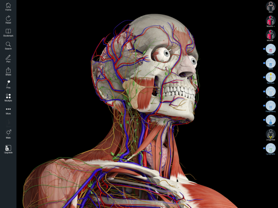 Essential Anatomy 5 screenshot