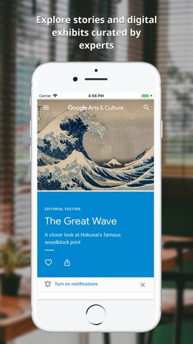 Download Google Arts & Culture for Pc