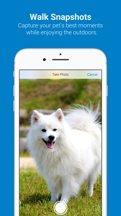 Tractive Dog Walk screenshot-2