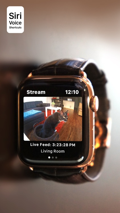 Watch Cam for Nest Cam screenshot-0