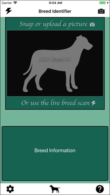 Dog Breed Identifier screenshot-0
