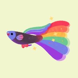 Rainbow guppy
