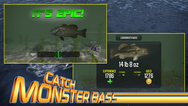 Master Bass Angler: Fishing screenshot-3