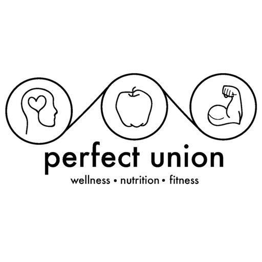 Perfect Union - Studio