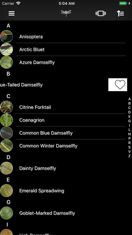 Dragonflies screenshot-4