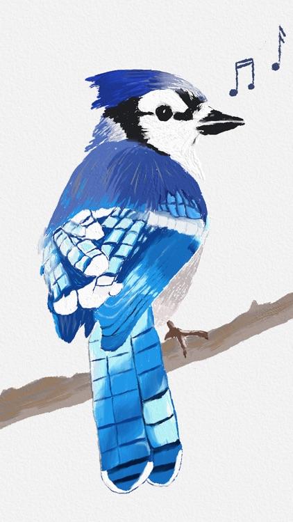 BirdSong ID (US)
