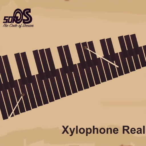 Xylophone Real: 2 mallet types