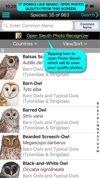 iBird Plus Guide to Birds screenshot-3