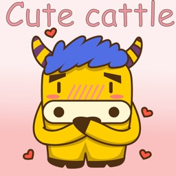 Cute cattle
