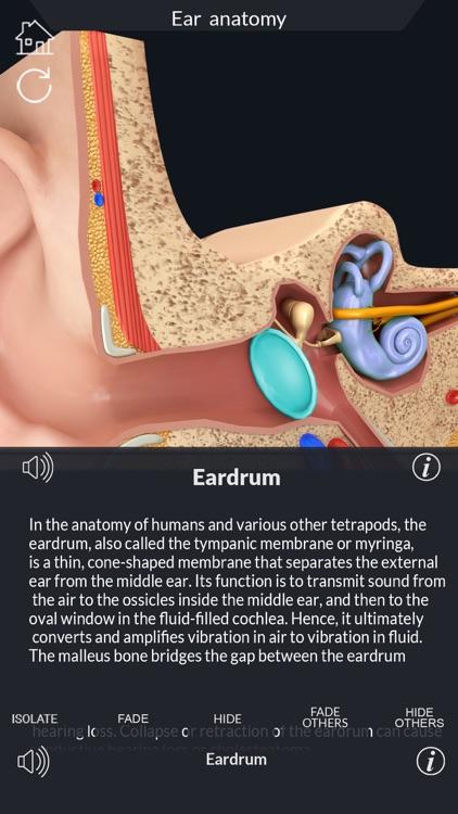 My Ear Anatomy screenshot-5