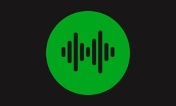 Music Player & Visualizer