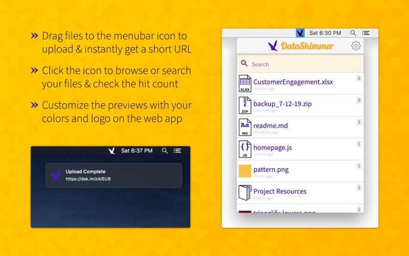 DataSkimmer скриншот программы 1