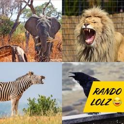Animal Yell Soundboard