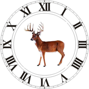 Best Hunting Times app review
